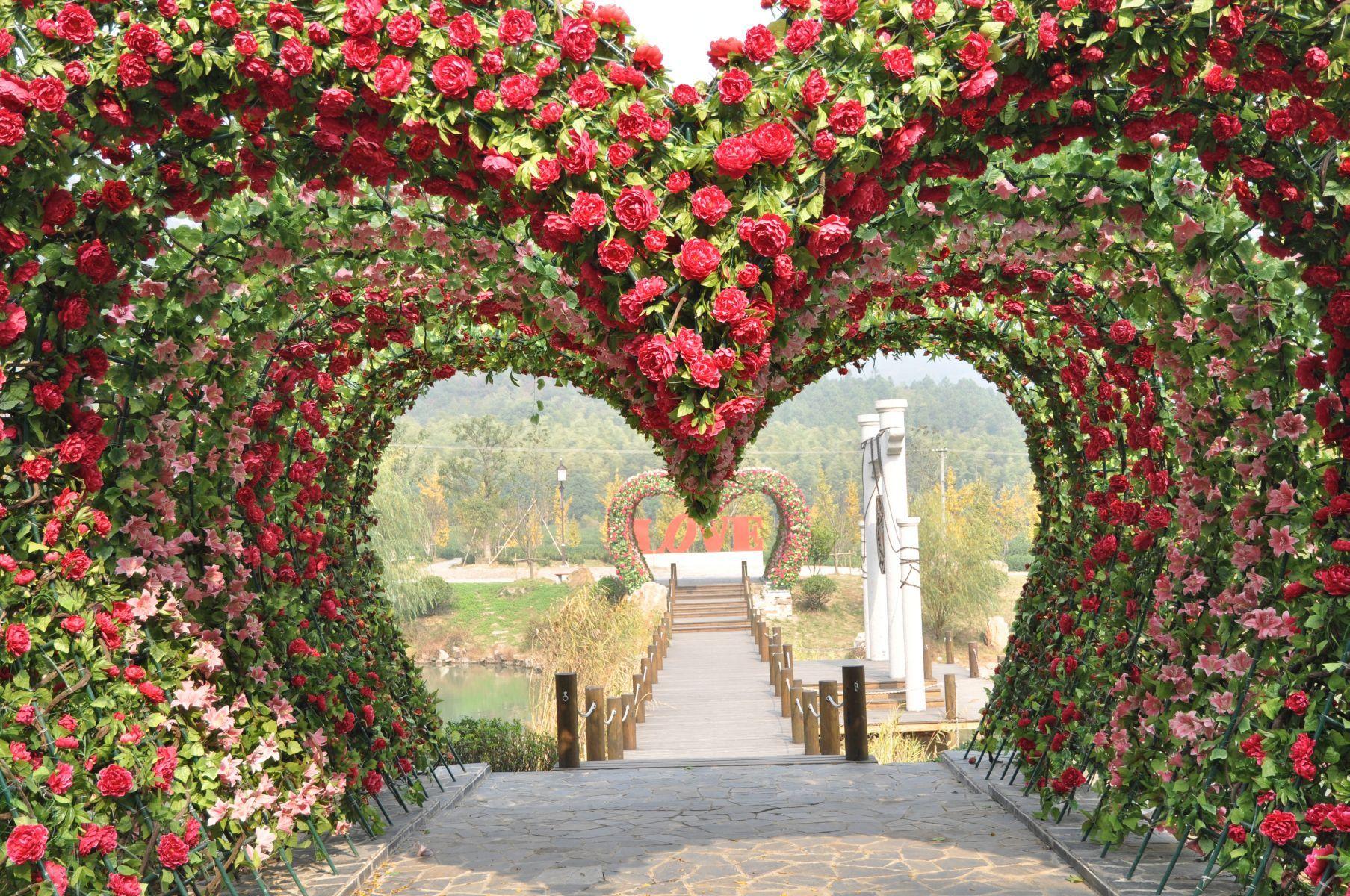 нами модели фотообои сад из красных роз пожалуй